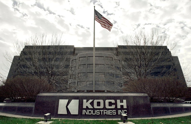 What can startups learn from Koch Industries?